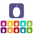 plum icons set vector image