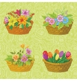 Seamless floral pattern baskets with flowers vector image vector image