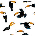 seamless pattern with funny toucan birds vector image vector image