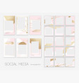 stories pack trendy editable template for social vector image