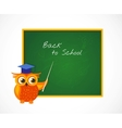 Back to School with smart owl near blackboard vector image