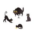 cartoon cat animals set isolated vector image vector image