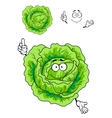 Cartoon green cabbage vegetable vector image vector image