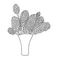cute cartoon flowers in vase lilac isolated on vector image vector image