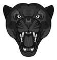 Panther Portrait Angry wild big cat vector image vector image