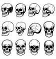 set of human skull on white background design vector image