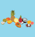 tropic fruits isolated set vector image