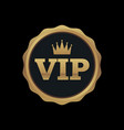 vip membership gold badge premium quality vector image vector image