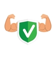 Accept green shield icon vector image vector image