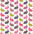 Colorful rabbit pattern vector image vector image