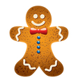 gingerbread cookie vector image