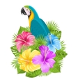 parrot ara colorful hibiscus flowers blossom vector image vector image
