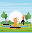 women yoga in the park vector image