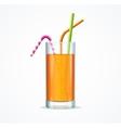 Orange Cocktail Glass vector image