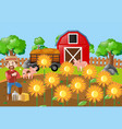 farmer and sunflowers in the field vector image