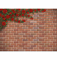 climbing rose on a brick vector image vector image