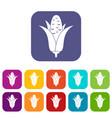 corncob icons set vector image vector image