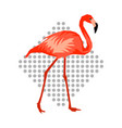 design with flamingo tropical bright abstract vector image