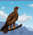 eagle in branch over landscape vector image vector image