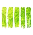 Green shining glitter polish samples isolated on vector image