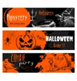 Halloween chalk sketch elements on blackboard vector image