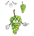 Laughing happy bunch of green cartoon grapes vector image vector image