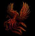 phoenix color graphic digital drawing vector image vector image