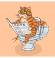 The cat in the toilet vector image vector image
