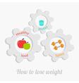 Cogwheel gear set with water apple dumbell vector image vector image