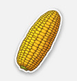 corn cob without leaves healthy vegetarian food vector image vector image