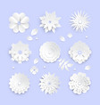 white paper cut flowers - set of modern vector image vector image