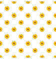 bee on flower pattern vector image vector image