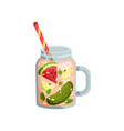 cocktail with watermelon apple cucumber mint in vector image vector image