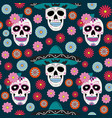 day dead skull with floral ornament vector image