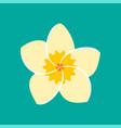 frangipani flower icon vector image