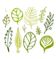 Handsketched leaves doodles set Green silhouettes vector image