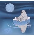 Polar bear on an ice floe vector image