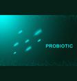 probiotics flow concept design template with vector image