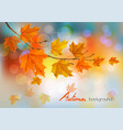 autumn nature background with colorful leaves and vector image