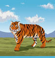 beautiful tiger on nature vector image vector image