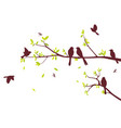 colorful birds sitting on beautiful trees isolated vector image vector image