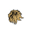 gold angry lion head logo sign flat design vector image vector image