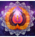 phoenix mandala vector image vector image