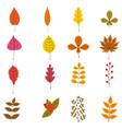 set of cute colorful autumn leaves and berries vector image vector image