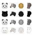 wild animal panda zebra lion hippopotamus vector image vector image