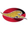 wild cheetah vector image
