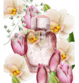 women perfume bottle floral product vector image vector image