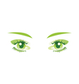 green eyes isolated vector image