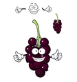 Cartoon bunch of currant berries vector image vector image