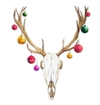 Christmas deer skull vector image